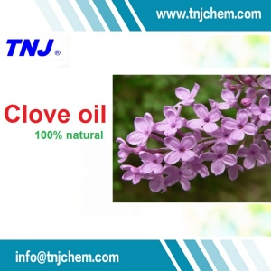 buy Clove oil Oil of Clove CAS 8000-34-8